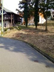 雷山の森4